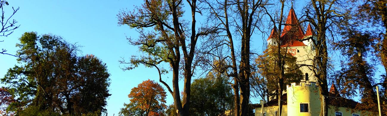 Herbstimpression, Foto: Schöll